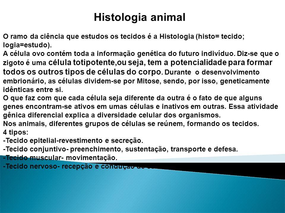 Histologia animal O ramo da ciência que estudos os tecidos é a Histologia (histo= tecido; logia=estudo).