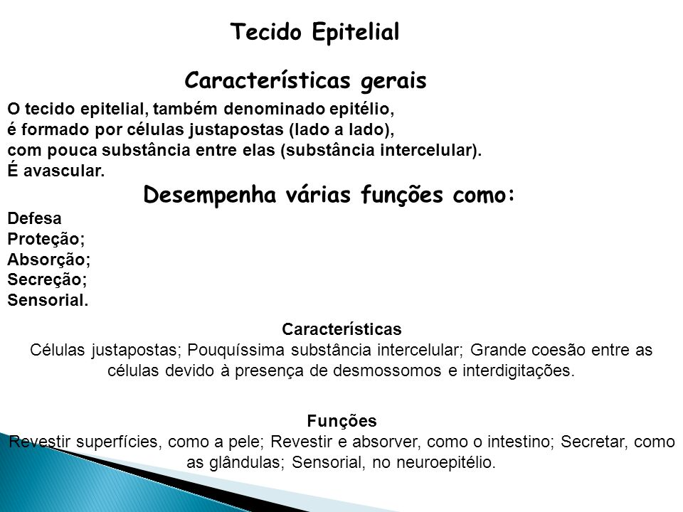 Características gerais Desempenha várias funções como:
