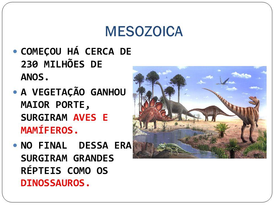MESOZOICA COMEÇOU HÁ CERCA DE 230 MILHÕES DE ANOS.