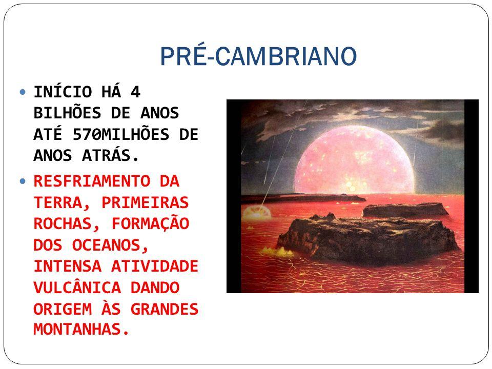 PRÉ-CAMBRIANO INÍCIO HÁ 4 BILHÕES DE ANOS ATÉ 570MILHÕES DE ANOS ATRÁS.