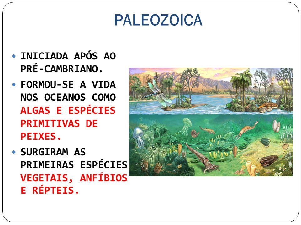 PALEOZOICA INICIADA APÓS AO PRÉ-CAMBRIANO.
