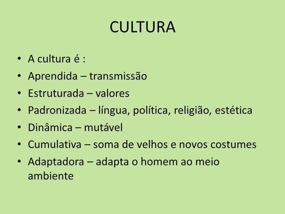 CULTURA A cultura é : Aprendida – transmissão Estruturada – valores