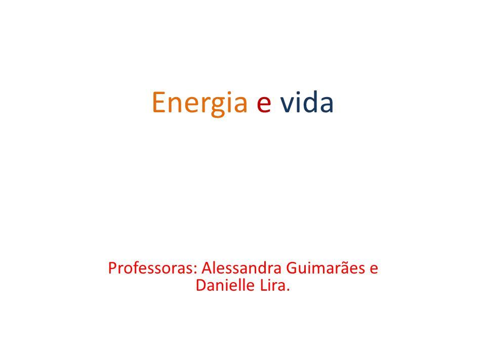 Professoras: Alessandra Guimarães e Danielle Lira.