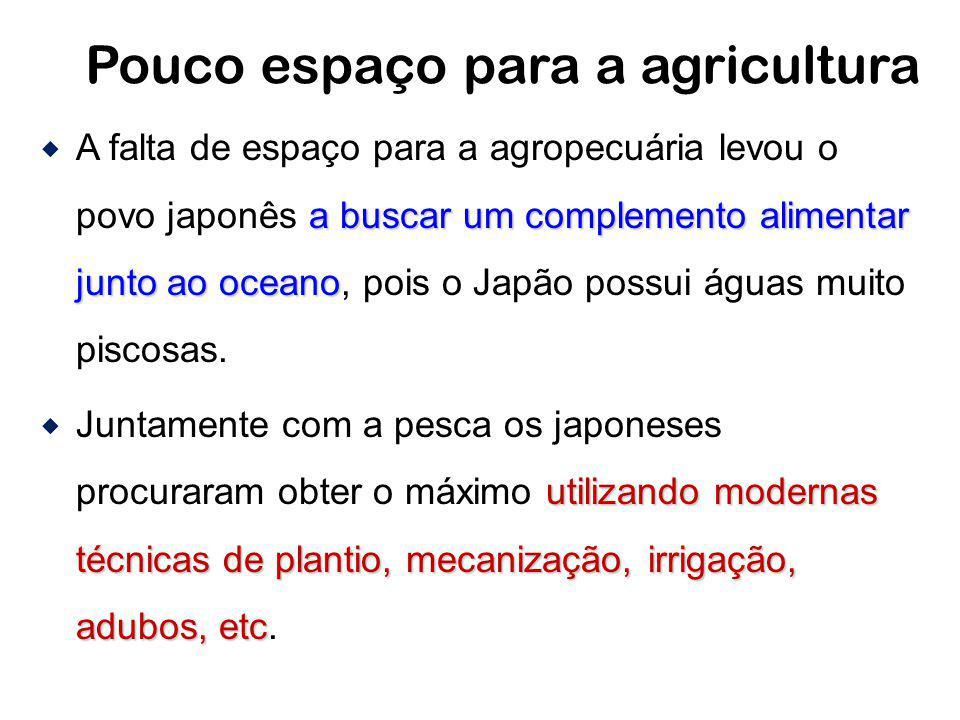 Pouco espaço para a agricultura