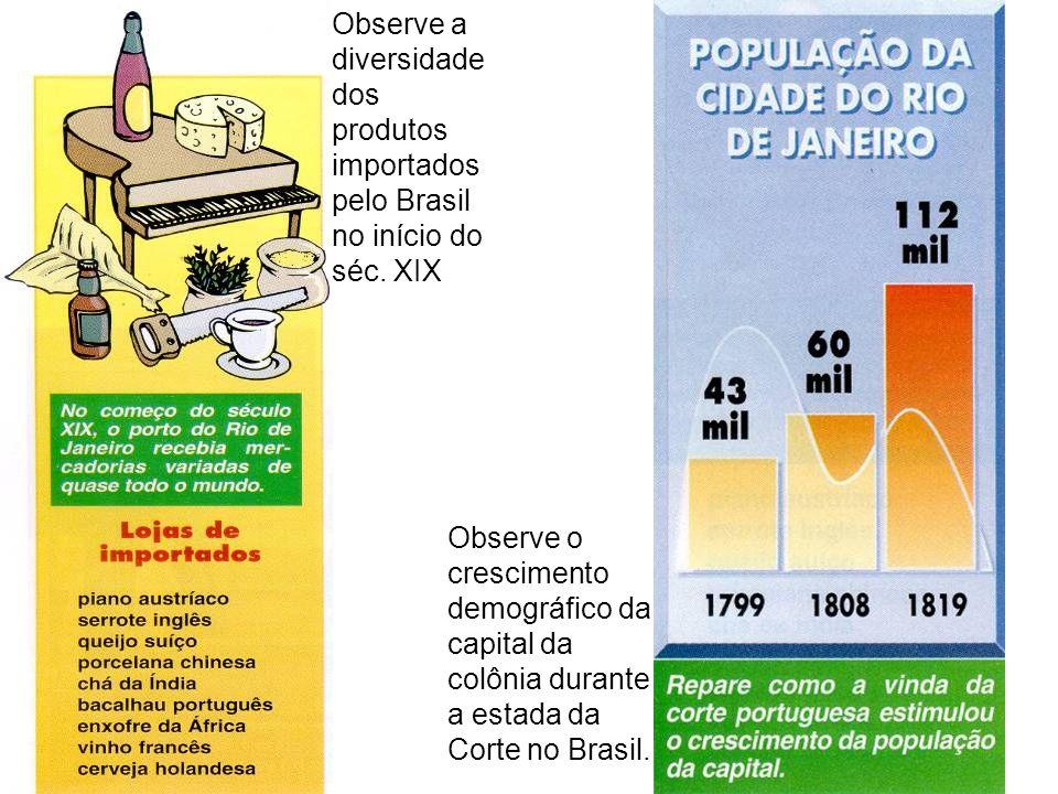 Observe a diversidade dos produtos importados pelo Brasil no início do séc. XIX