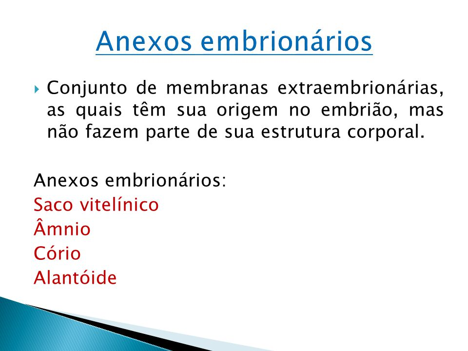 Anexos embrionários Conjunto de membranas extraembrionárias, as quais têm sua origem no embrião, mas não fazem parte de sua estrutura corporal.