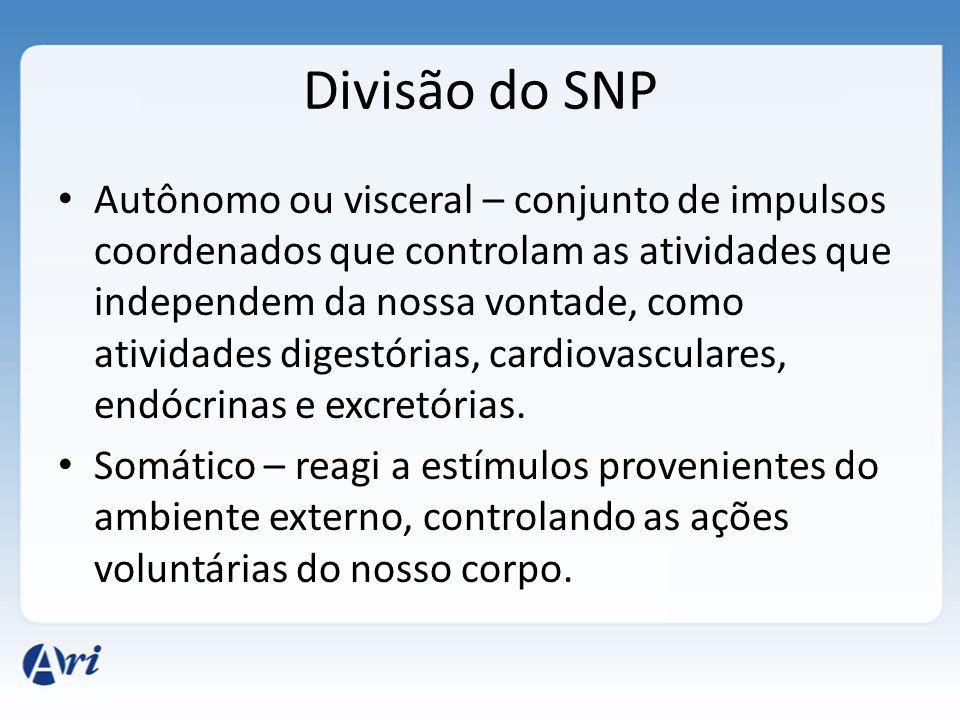 Divisão do SNP