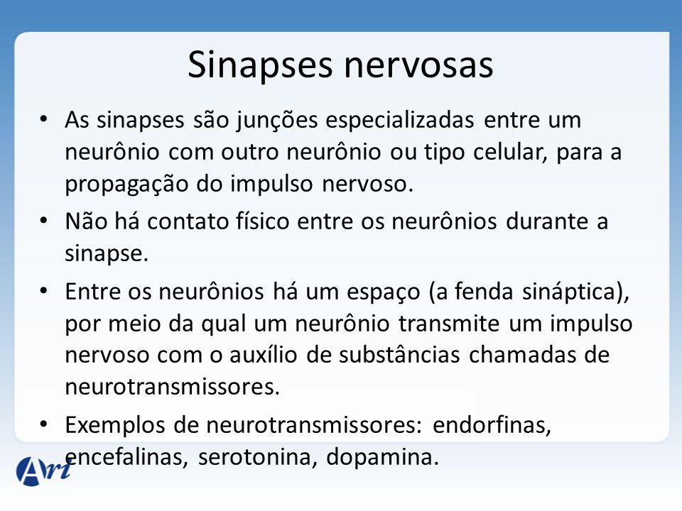 Sinapses nervosas As sinapses são junções especializadas entre um neurônio com outro neurônio ou tipo celular, para a propagação do impulso nervoso.