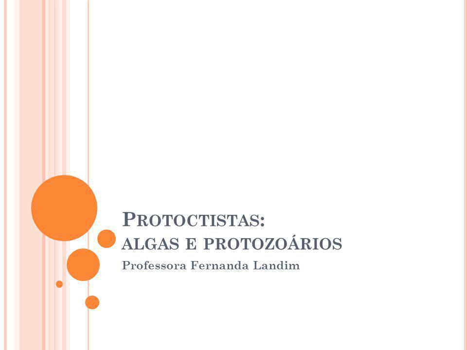 Protoctistas: algas e protozoários