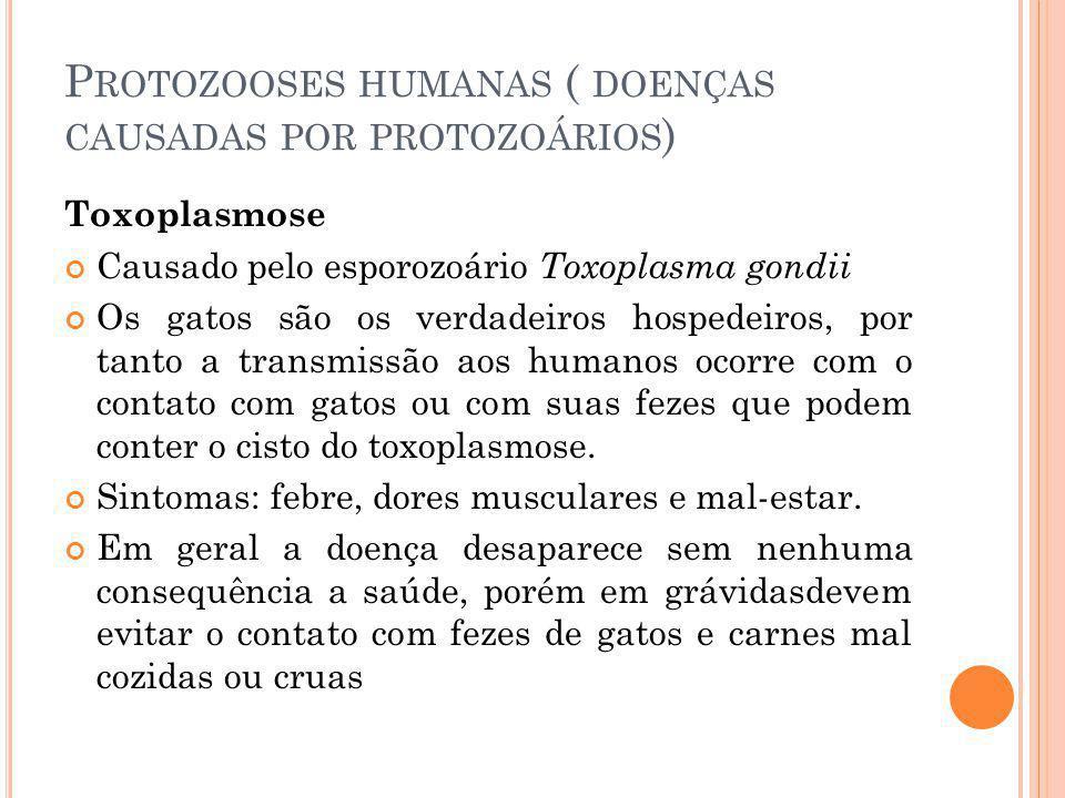 Protozooses humanas ( doenças causadas por protozoários)