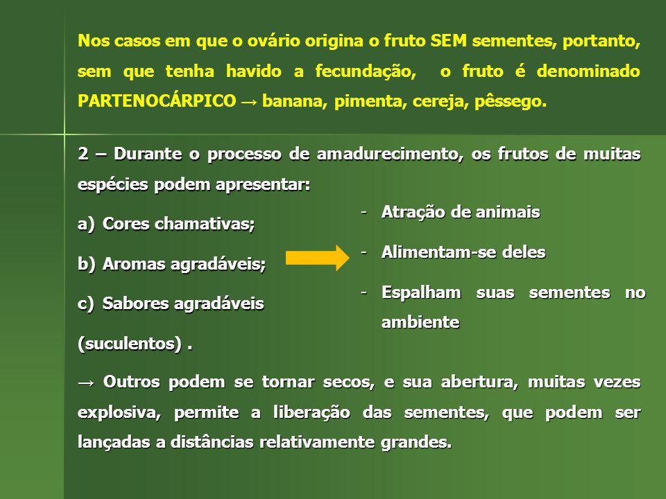 Nos casos em que o ovário origina o fruto SEM sementes, portanto, sem que tenha havido a fecundação, o fruto é denominado PARTENOCÁRPICO → banana, pimenta, cereja, pêssego.