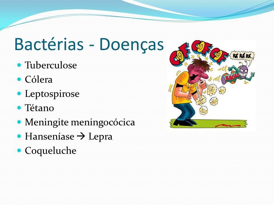 Bactérias - Doenças Tuberculose Cólera Leptospirose Tétano