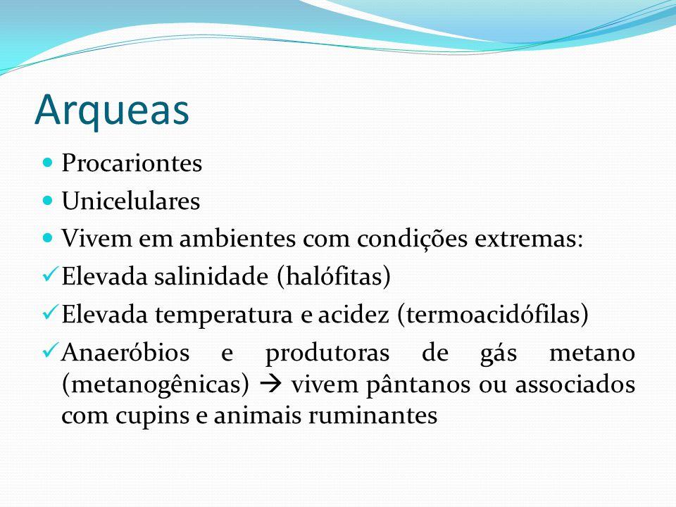 Arqueas Procariontes Unicelulares