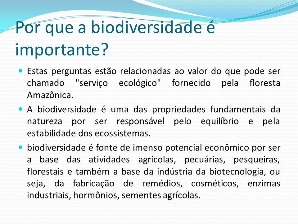 Por que a biodiversidade é importante