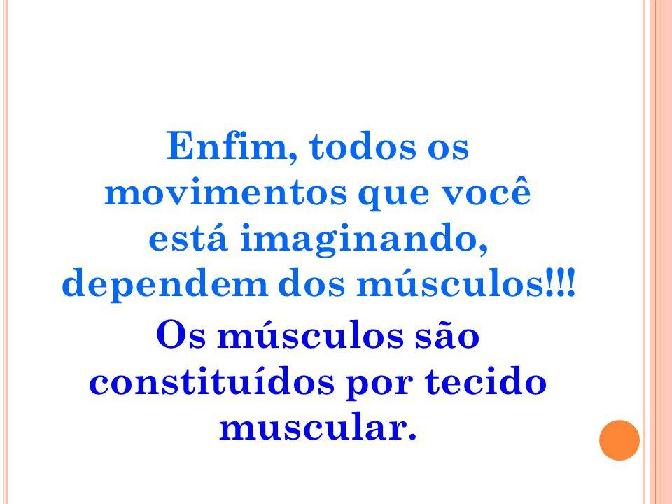 Enfim, todos os movimentos que você está imaginando, dependem dos músculos!!.