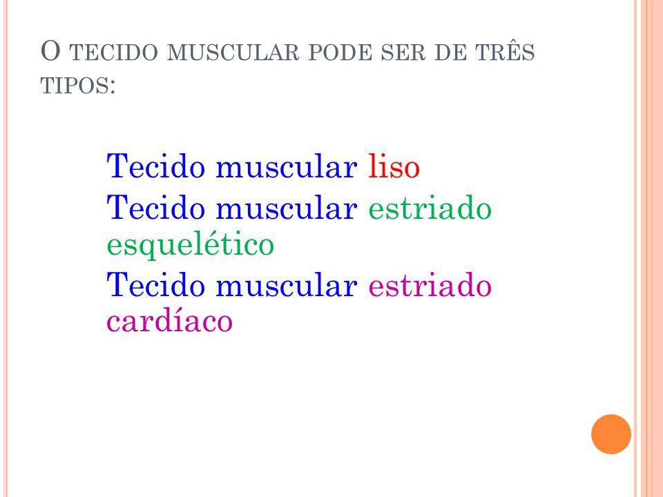 O tecido muscular pode ser de três tipos: