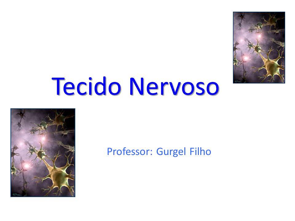 Professor: Gurgel Filho