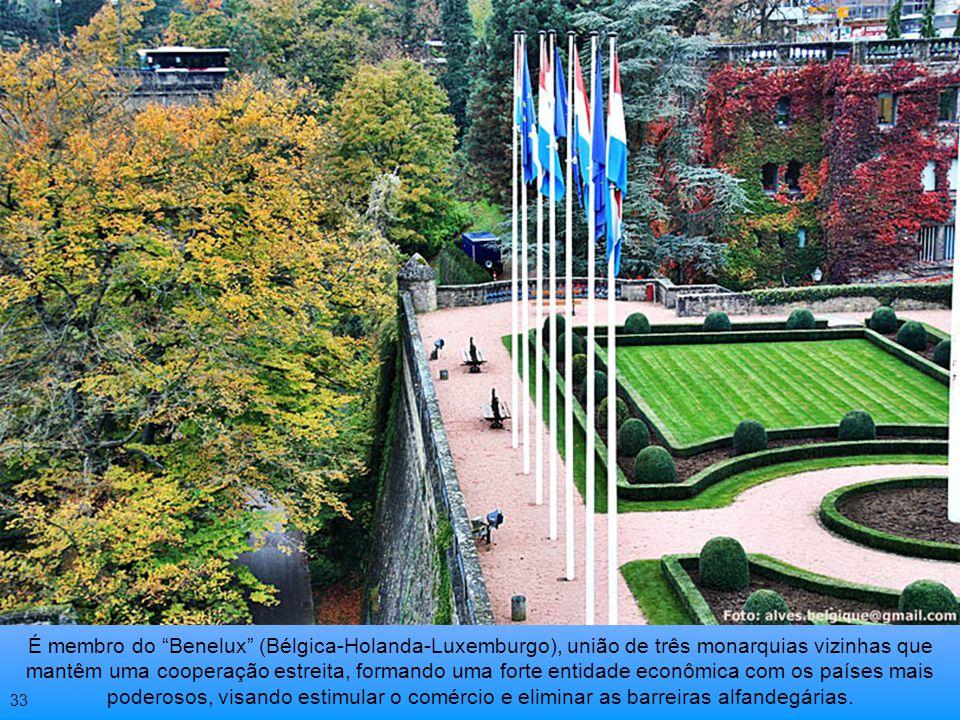 É membro do Benelux (Bélgica-Holanda-Luxemburgo), união de três monarquias vizinhas que mantêm uma cooperação estreita, formando uma forte entidade econômica com os países mais poderosos, visando estimular o comércio e eliminar as barreiras alfandegárias.
