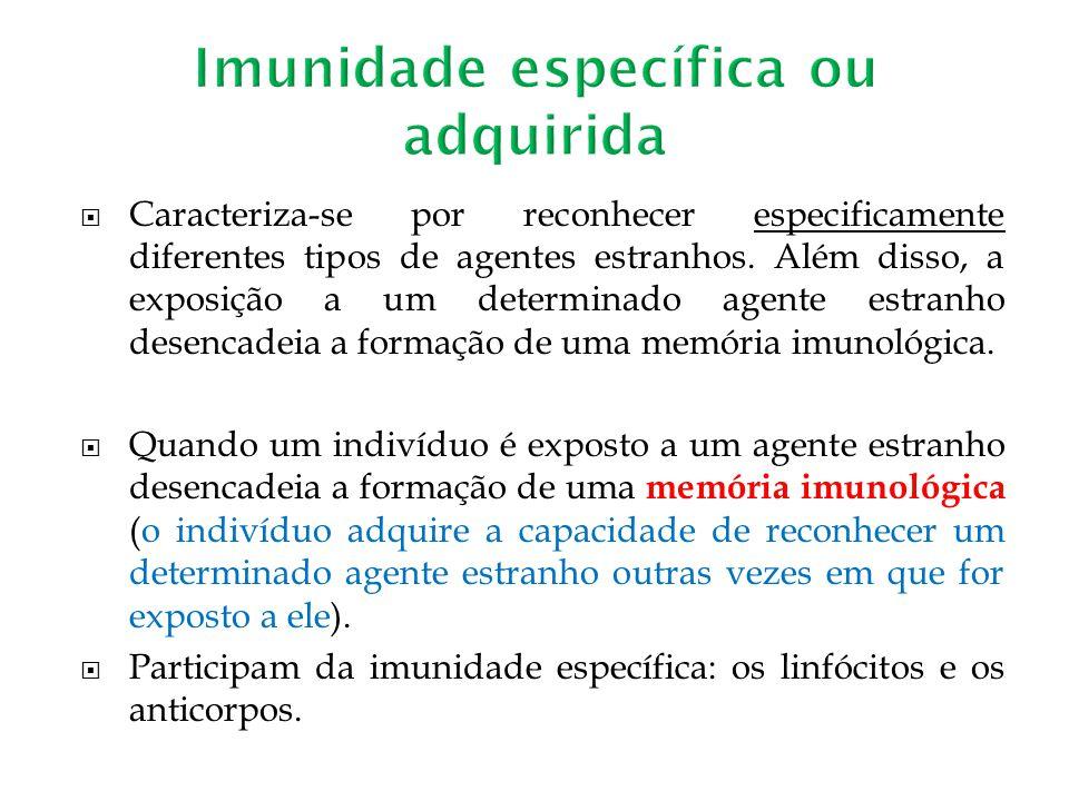 Imunidade específica ou adquirida