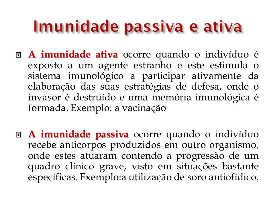 Imunidade passiva e ativa