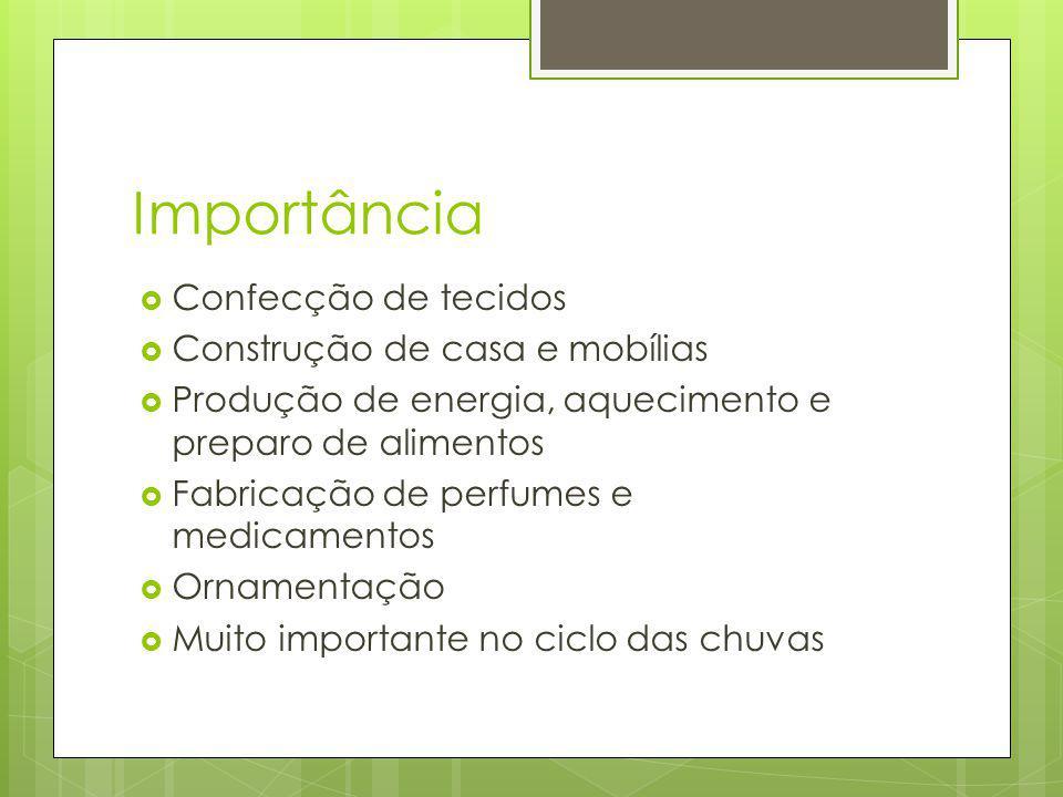 Importância Confecção de tecidos Construção de casa e mobílias