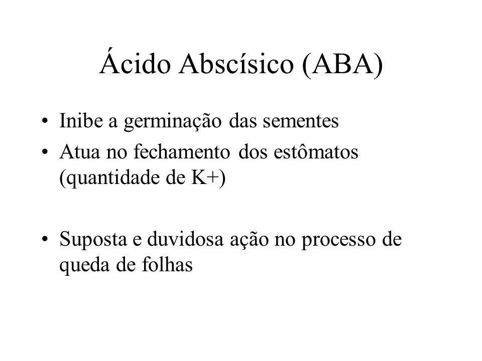 Ácido Abscísico (ABA) Inibe a germinação das sementes