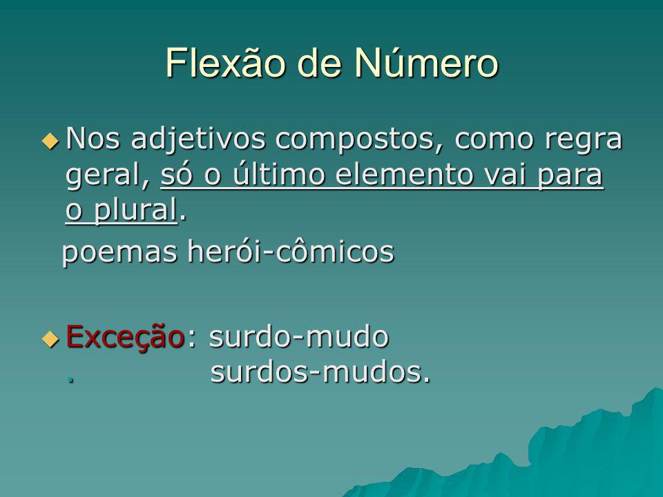 Flexão de Número Nos adjetivos compostos, como regra geral, só o último elemento vai para o plural.