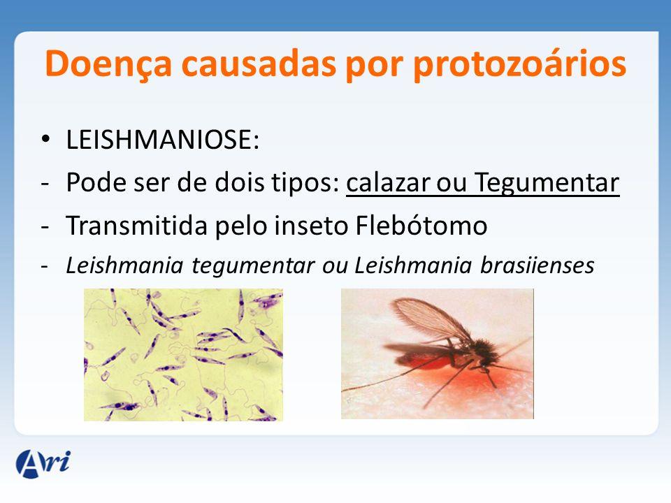 Doença causadas por protozoários