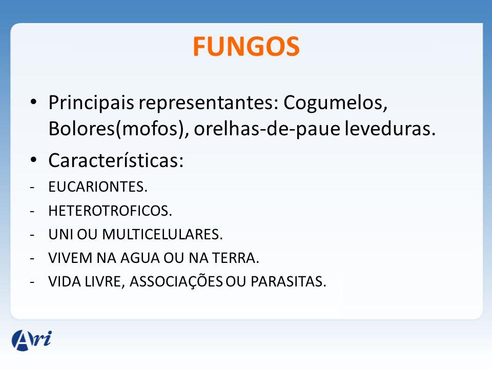 FUNGOS Principais representantes: Cogumelos, Bolores(mofos), orelhas-de-paue leveduras. Características: