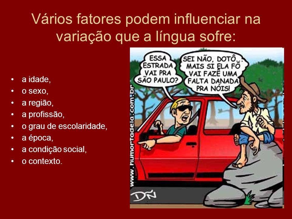 Vários fatores podem influenciar na variação que a língua sofre: