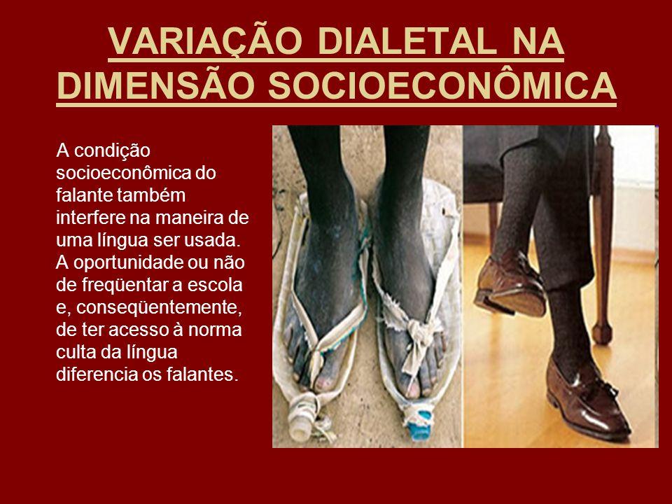 VARIAÇÃO DIALETAL NA DIMENSÃO SOCIOECONÔMICA