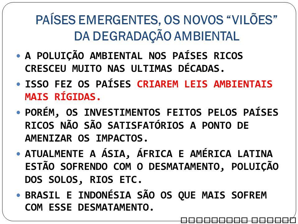 PAÍSES EMERGENTES, OS NOVOS VILÕES DA DEGRADAÇÃO AMBIENTAL