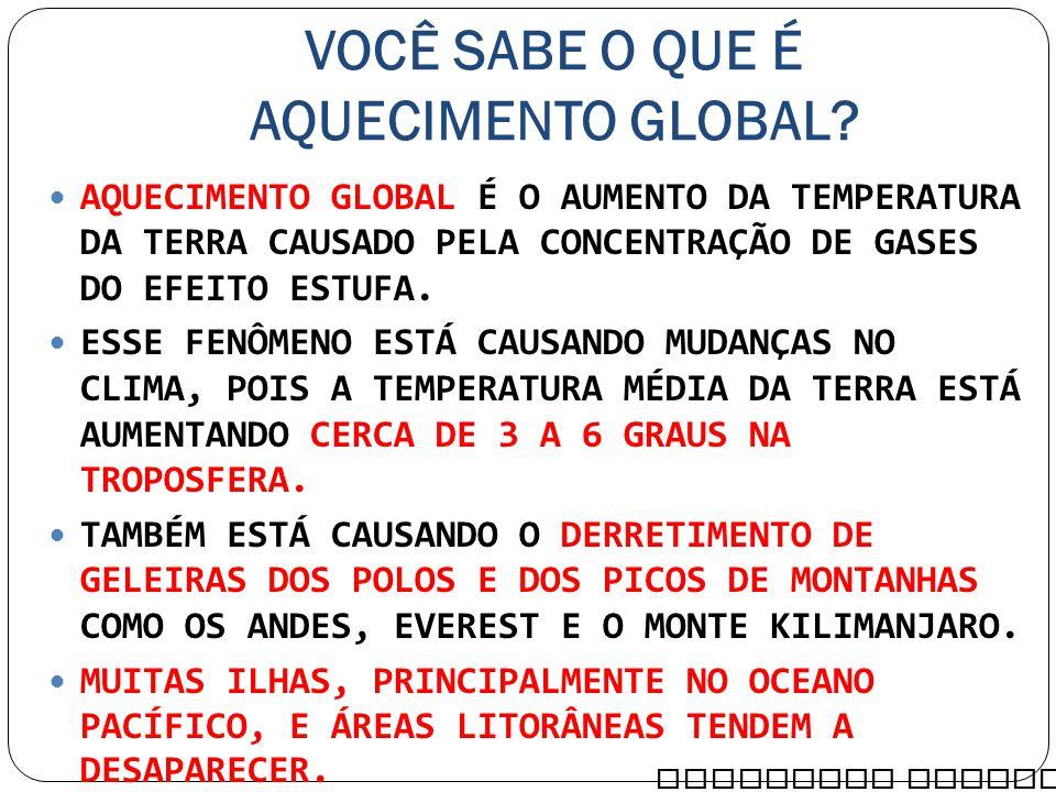 VOCÊ SABE O QUE É AQUECIMENTO GLOBAL