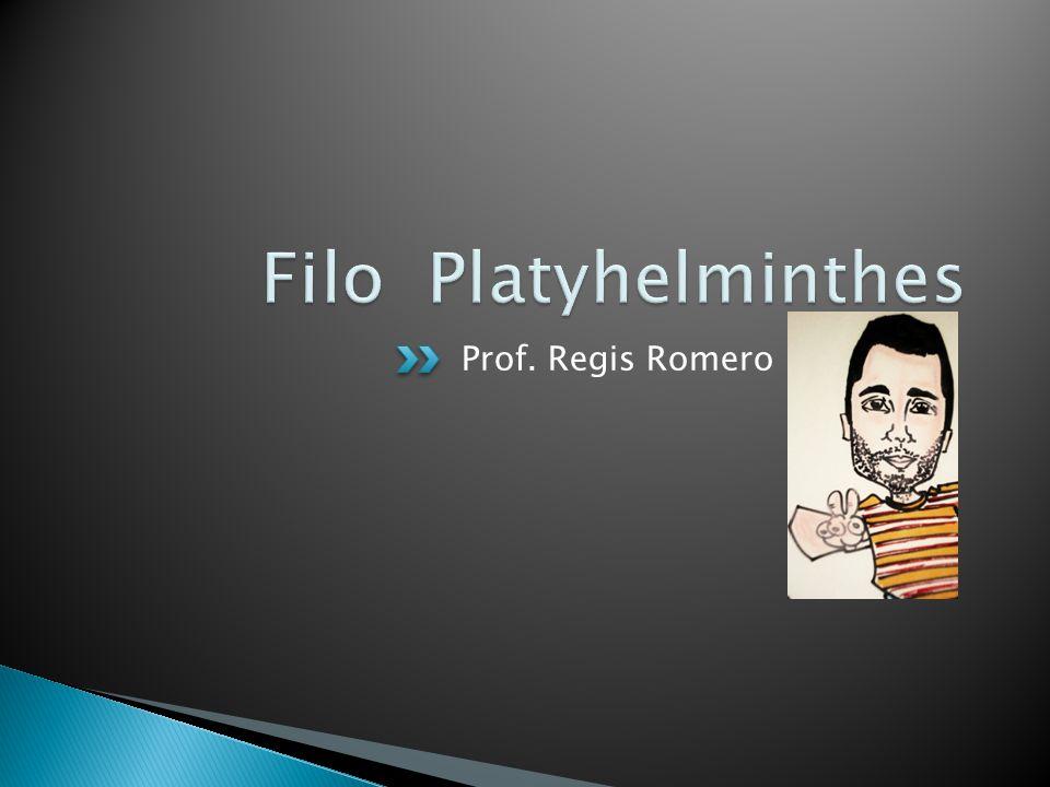 Filo Platyhelminthes Prof. Regis Romero