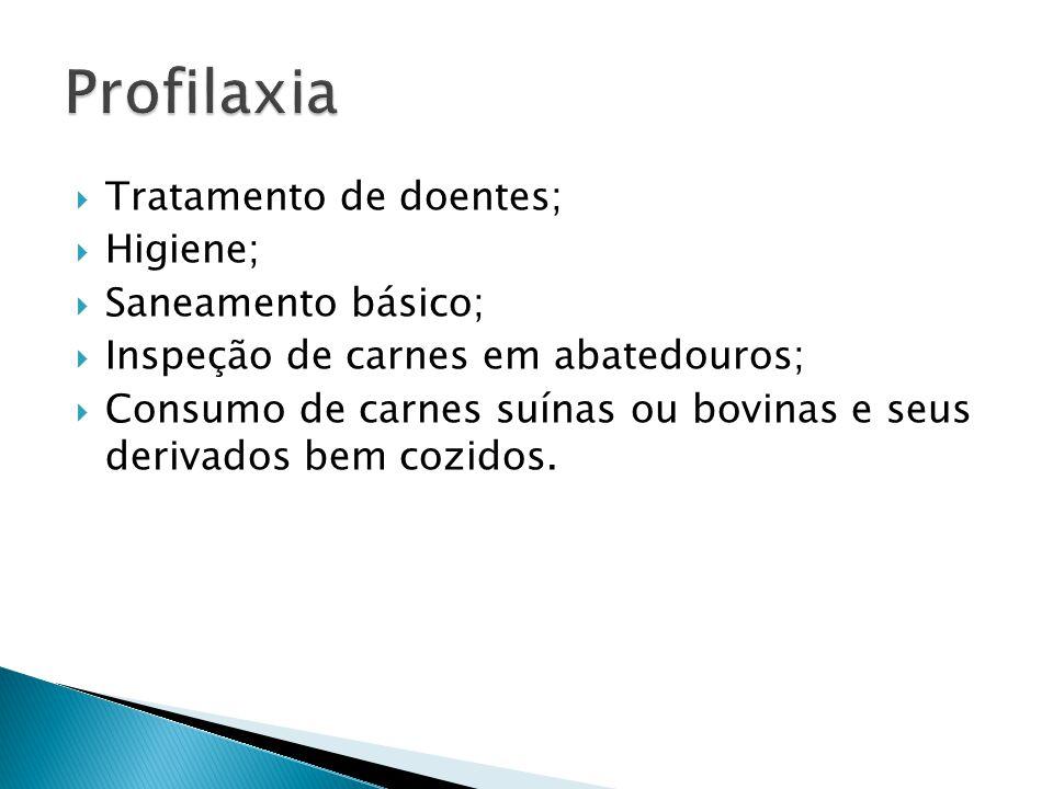 Profilaxia Tratamento de doentes; Higiene; Saneamento básico;