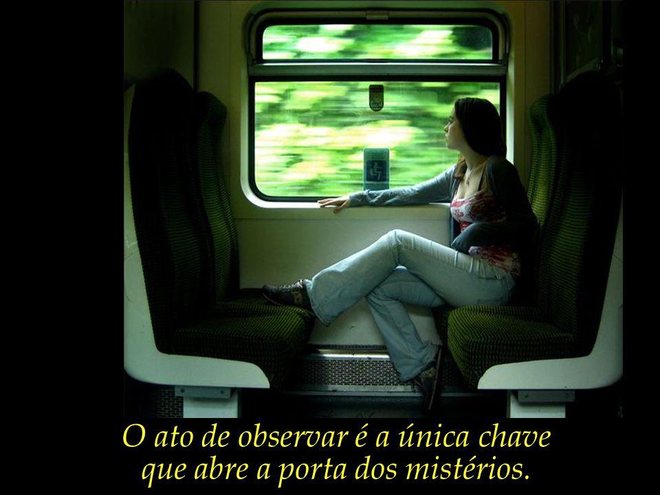 O ato de observar é a única chave que abre a porta dos mistérios.