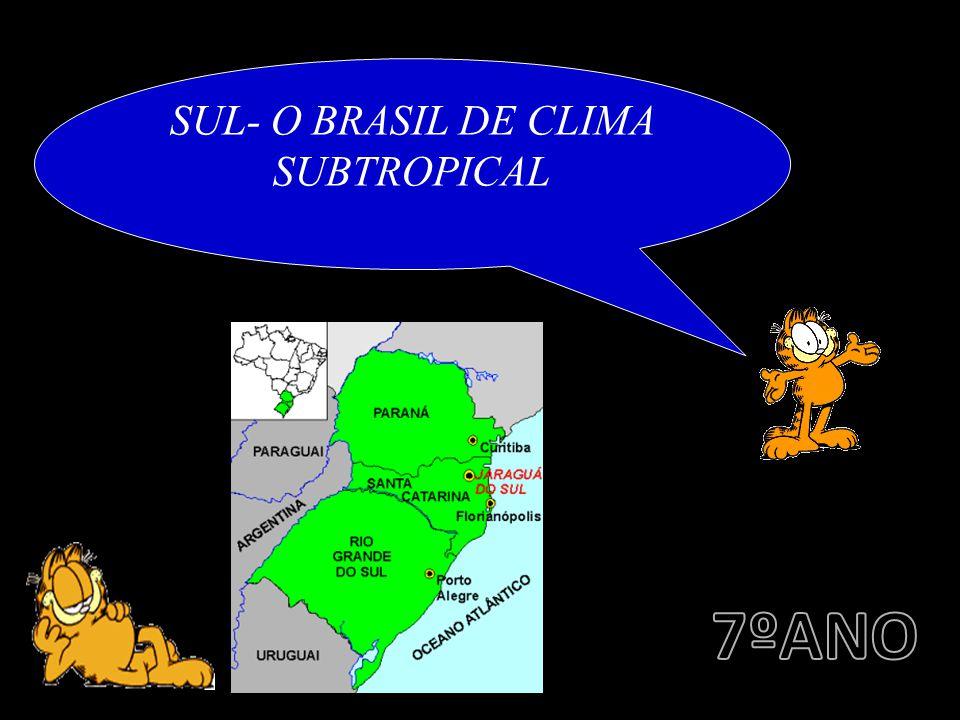 SUL- O BRASIL DE CLIMA SUBTROPICAL
