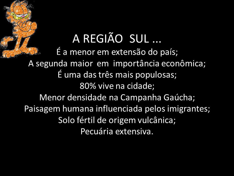 A REGIÃO SUL ...
