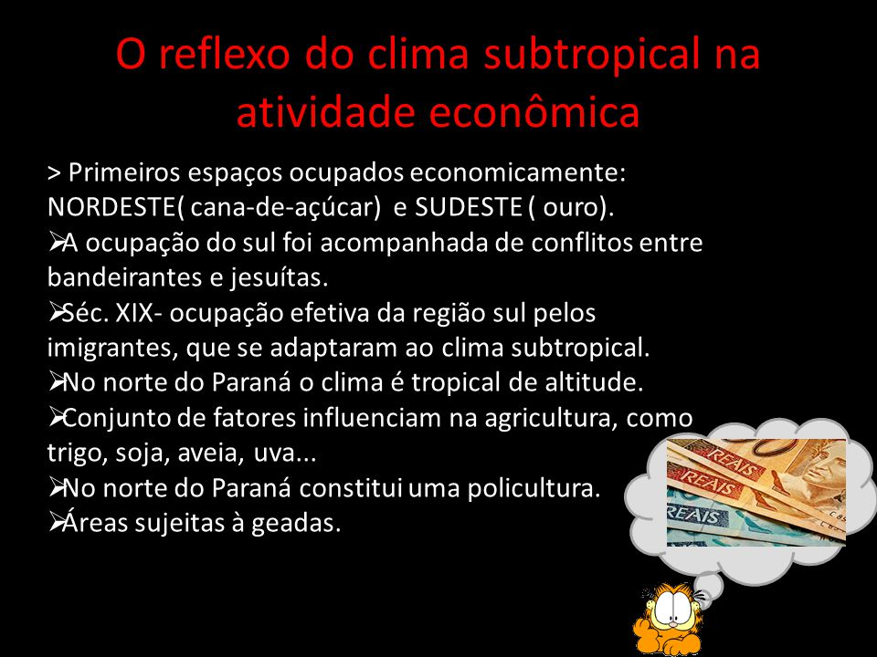 O reflexo do clima subtropical na atividade econômica