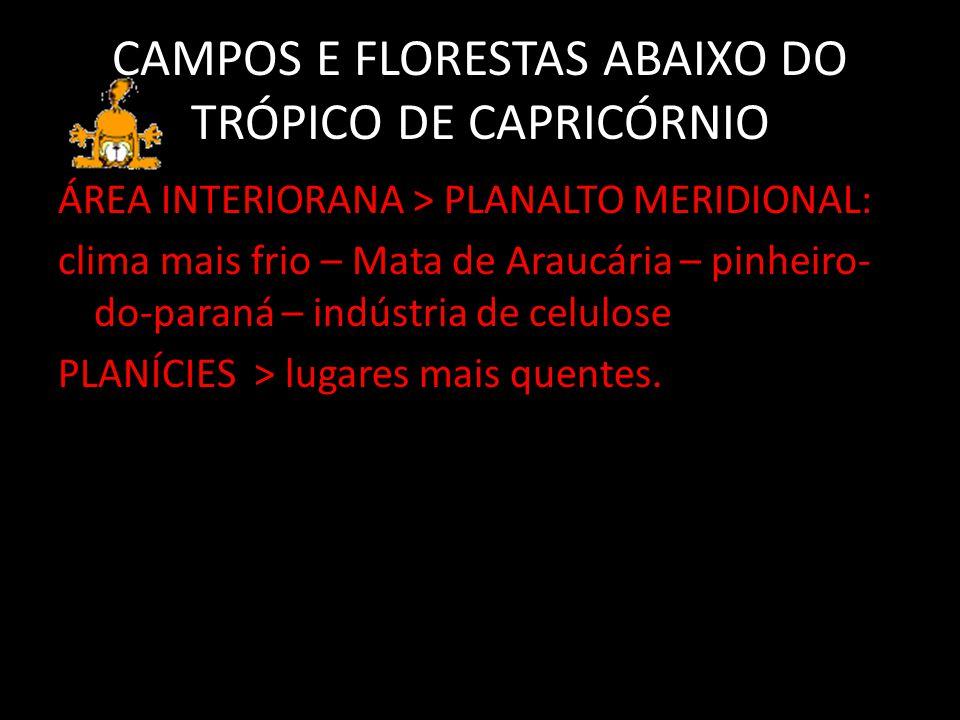 CAMPOS E FLORESTAS ABAIXO DO TRÓPICO DE CAPRICÓRNIO
