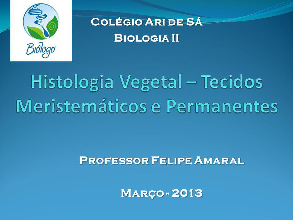 Histologia Vegetal – Tecidos Meristemáticos e Permanentes