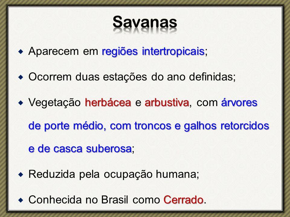 Savanas Aparecem em regiões intertropicais;