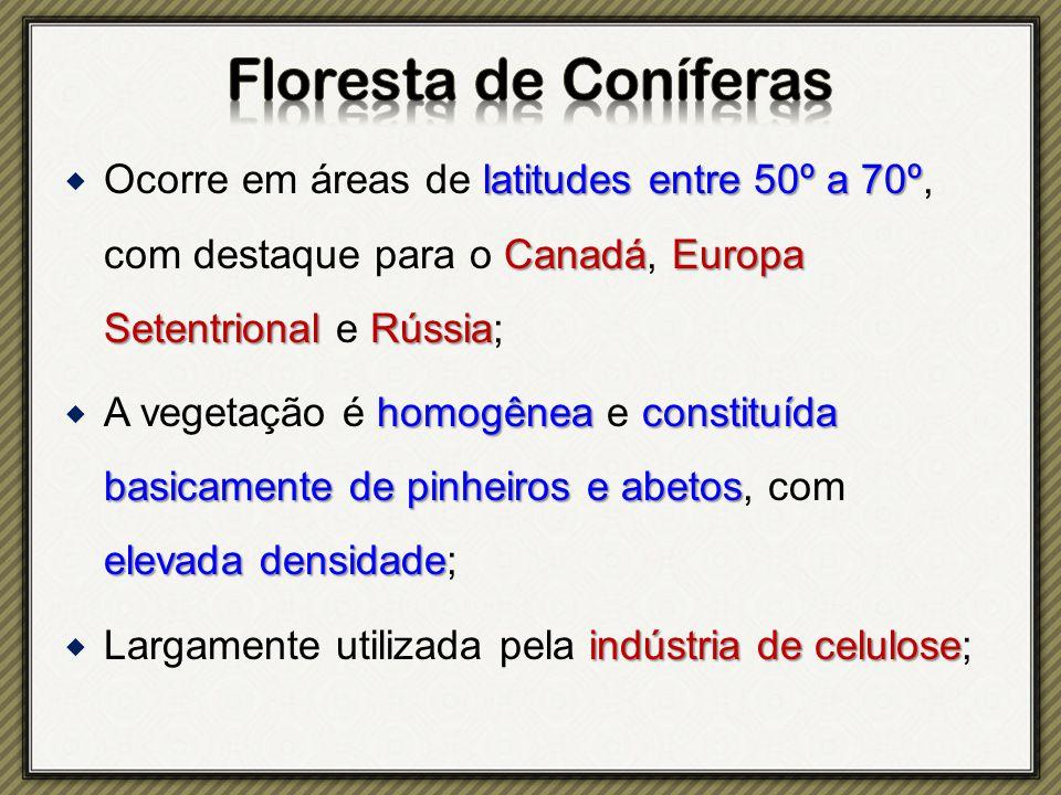 Floresta de Coníferas Ocorre em áreas de latitudes entre 50º a 70º, com destaque para o Canadá, Europa Setentrional e Rússia;