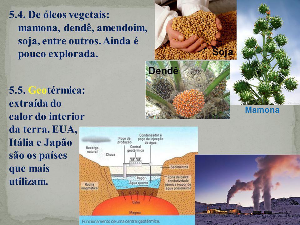 5. 4. De óleos vegetais: mamona, dendê, amendoim, soja, entre outros