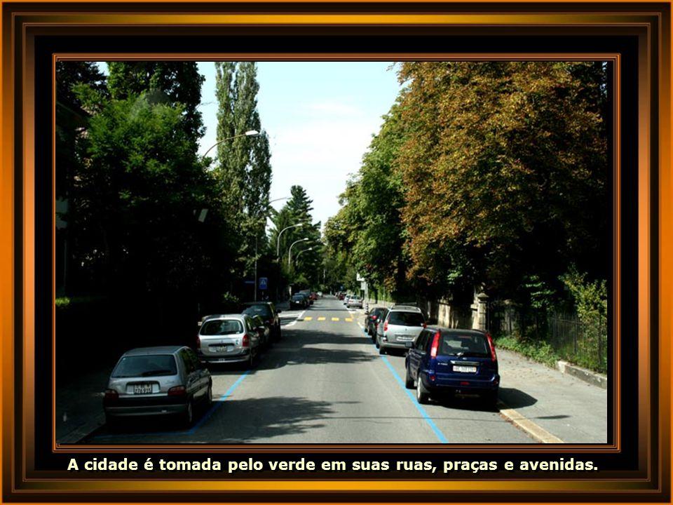 A cidade é tomada pelo verde em suas ruas, praças e avenidas.