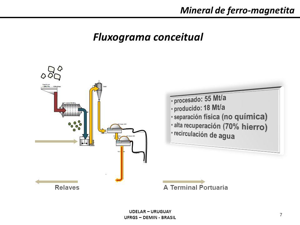 Fluxograma conceitual