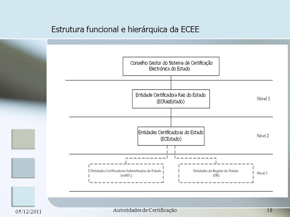 Estrutura funcional e hierárquica da ECEE