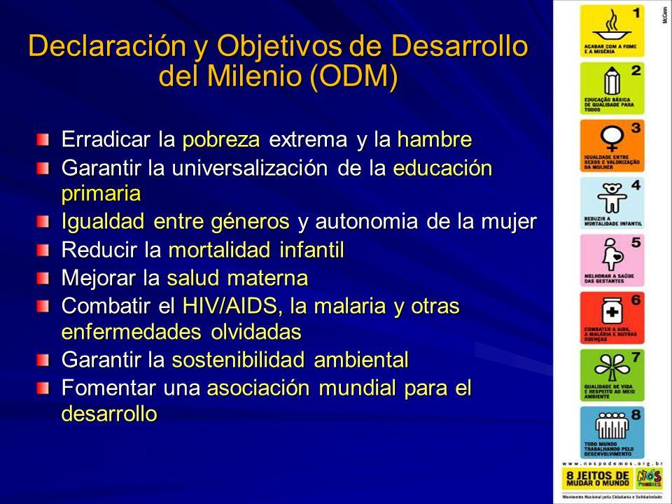 Declaración y Objetivos de Desarrollo del Milenio (ODM)