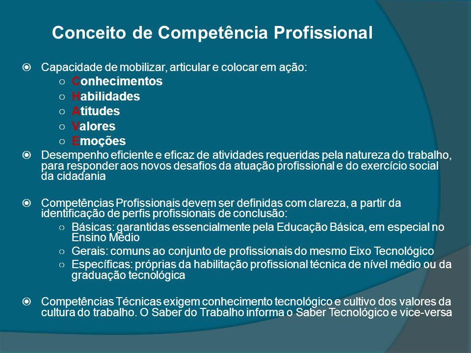 Conceito de Competência Profissional