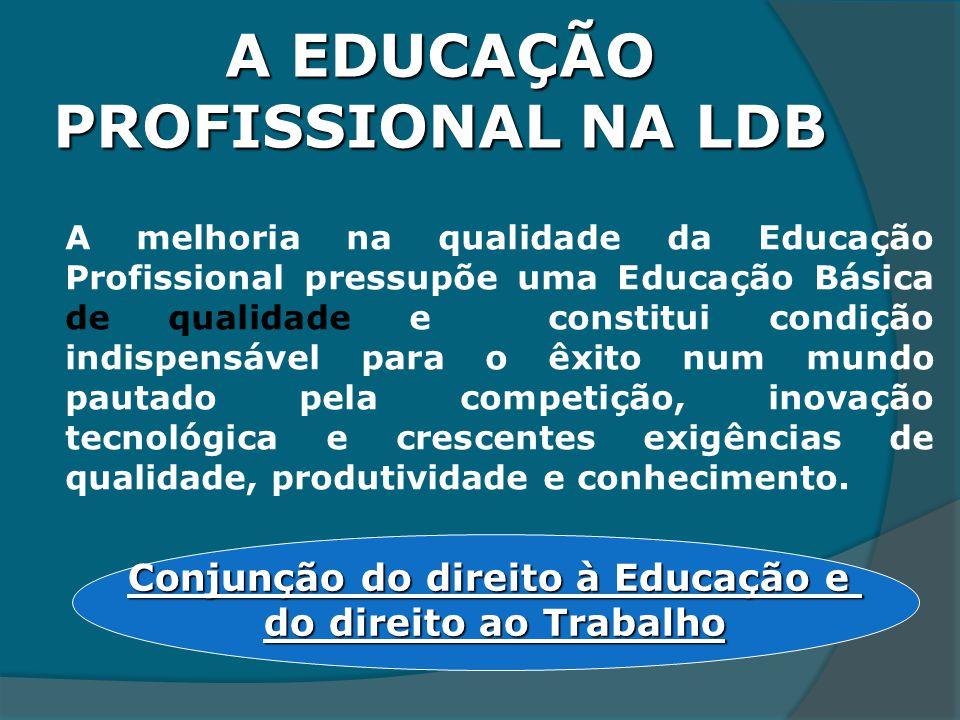 A EDUCAÇÃO PROFISSIONAL NA LDB
